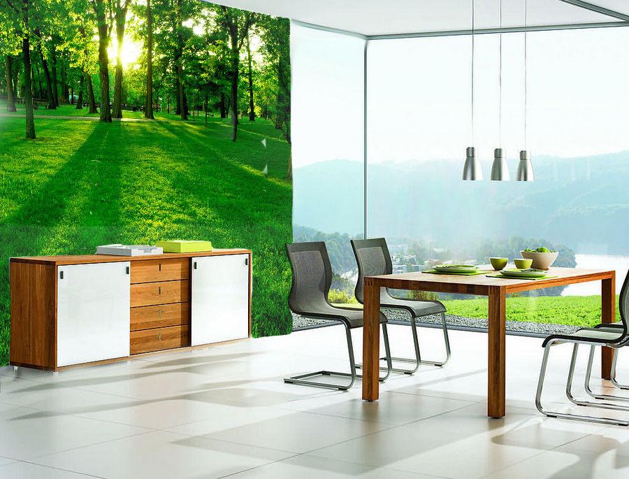 3D Waldland Grünes Gras 854 Tapete Wandgemälde Tapete Tapeten Bild Familie DE