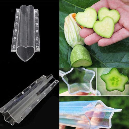 2er Interessanter Gemüse Früchte Formen Wuchsschblone Herzgurkenform