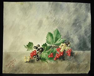 Rameau-of-Bays-Lucie-Boissoudy-Girl-Salutes-Vice-Admiral-Philippe-Baucheron-1886