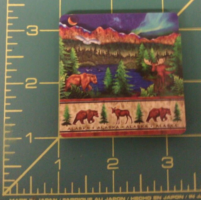 Alaska Magnet Northern Lights and Wildlife 3D - New - Ships Worldwide