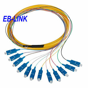 1.5 Meters 12 stand Fiber FC Pigtail  MultiMode 62.5//125 Fiber Optic Pactch Cord