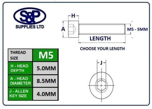 5MM 5mm  8MM TO 50MM LONG ZINC PLATED SOCKET CAPSCREW GR12.9 BZP