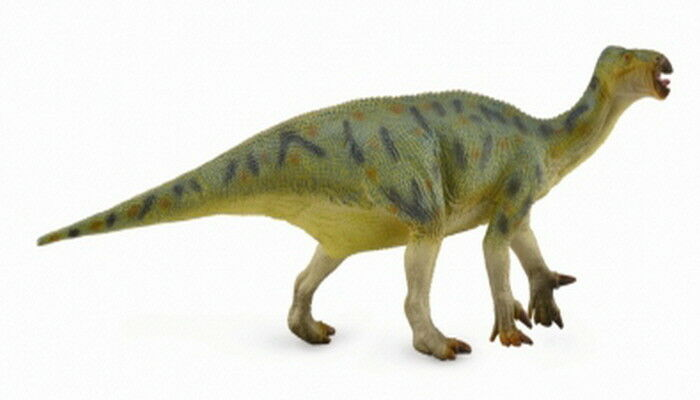 Collecta 88812 Iguanodon Deluxe 1 40 Scale Animal Figure Toy