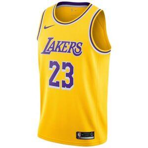 b2ac6f528 New 2018-2019 Nike Los Angeles Lakers LeBron James  23 Icon Swingman ...