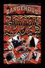 Dangerous Loops by Rex C D Lee (Paperback / softback, 2011)