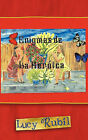 Enigmas de La Her Ica by Lucy Rubil (Paperback / softback, 2011)