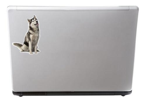 2 x 10cm Siberian Husky Vinyl Stickers Decals Laptop Tablet Car Dog Gift #6294