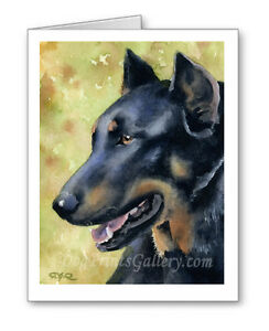 Beauceron-Set-of-10-Note-Cards-With-Envelopes