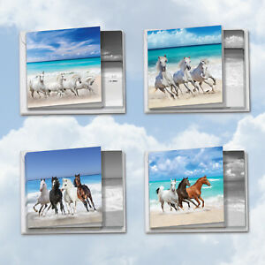 MQ5074OCB-B3x4-Gallops-and-Greetings-12-Assorted-Blank-All-Occasion-Note-Cards