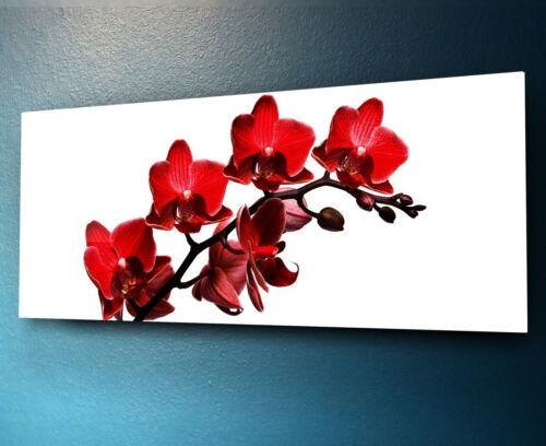 Verre Imprimer Wall Art Image 125x50cm sur verre décoratif mur Photo 65264830