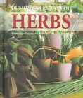 Dumont's Lexicon of Herbs by Andrea Rausch, Brigitte Lotz (Hardback, 2006)
