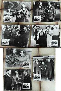 7-Original-Aushangfotos-Schrecken-der-Division-Jerry-Lewis-Dean-Martin-s-w