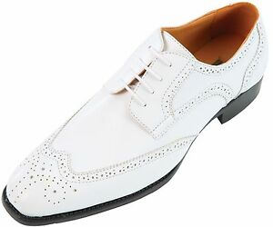 NEW Bolano Mens White Smooth Oxford With Wing-Tip   Elwyn-007