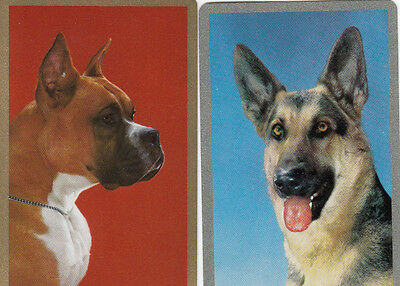 Vintage Swap / Playing Cards -  2 SINGLE-  DOG HEADS - GOLD SILVER BORDERS