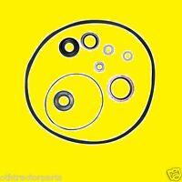 Massey Ferguson 1810529m91 Power Steering Pump Seal O-ring Kit 135, 148, 20, 240