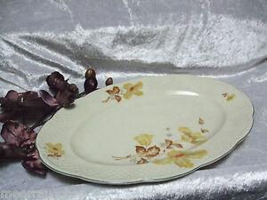 Gr-ovaler-Tielsch-Altwasser-Porzellan-Kuchenteller-Kuchenplatte-Blueten-Relief