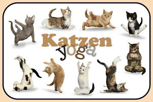 Gatos-Yoga-Letrero-de-Metal-Arqueado-Tin-Sign-20-X-30cm-CC0368