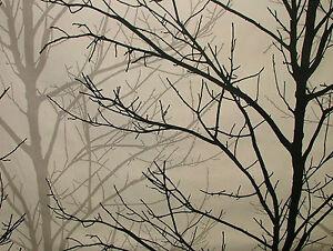 Prestigious Textiles Willow Tree Graphite 100 Cotton