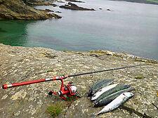 MACKEREL ROD &REEL MACKEREL FISHING ROD SPINNING ROD TELESCOPIC ROD BAITCASTING