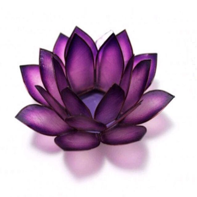 Lotus Capiz Shell Purple Passion Tea Light Holder with free tea light candle