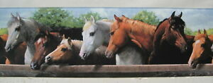 WESTERN HORSES AND PONIES WALLPAPER BORDER 2 ROLL LOT
