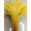 Wholesale-10-2000-Pcs-Beautiful-Rooster-Tail-Feathers-12-14-Inches-30-35cm thumbnail 9