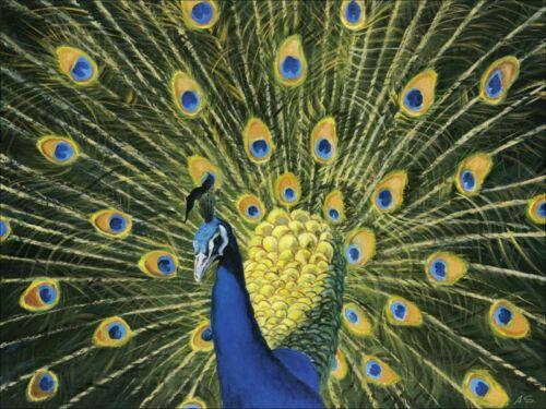 S Wandbilder selbstklebend A Tiere Vögel Malerei Grün A0XT