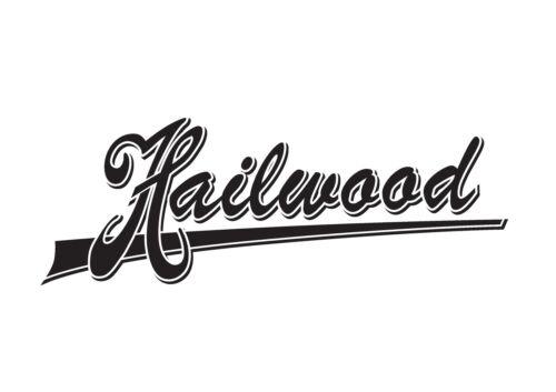 "Hailwood Switchtip /""Macassar Ebony/"" fits US//Switchcraft Switch-PRS//Gibson®"
