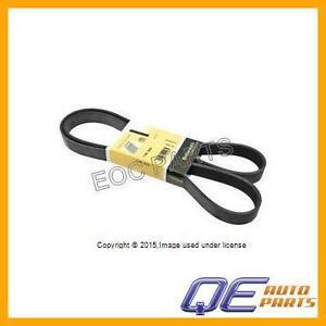 Belt-Alternator-Water-Pump-Power-Steering-7K-X-1635