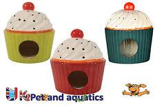Hamster House Cake, Ceramic 13 x 13 x 15cm Assorted Colours