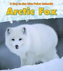 Arctic Fox by Katie Marsico (Hardback, 2011)