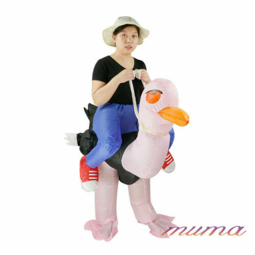 Adult Hen Stag Blow Up Costume Gig Novelty Inflatable Horse Dinosaur Fancy Dress