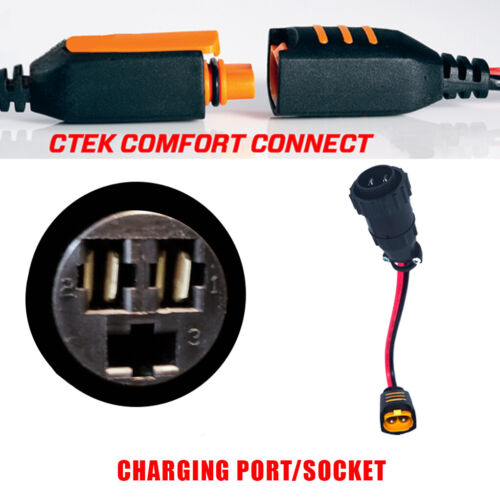 Bentley Continental GT 2003-2013 Battery Charger Conditioner