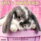 Just Bunnies by Willow Creek Press 9781682340431 (calendar 2016)