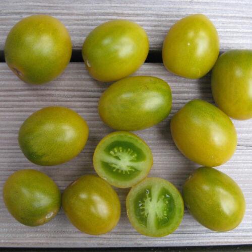 10 graines TOMATE CERISE RAISIN VERT N16 GREEN GRAPE TOMATO SEEDS Lycop. escul.