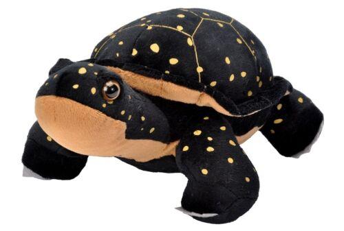 Schildkröte 30 cm Cuddlekins Kuscheltier Plüschtier Wild Republic 19420