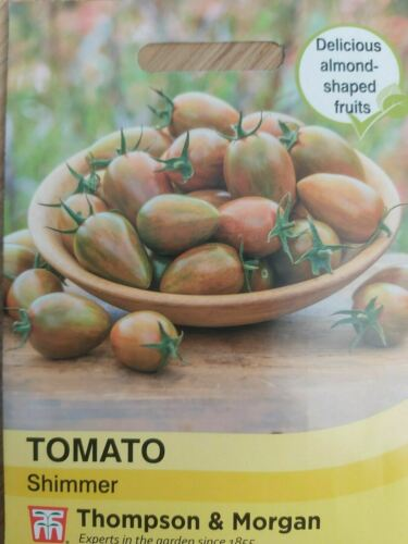 Tomato Shimmer 8 Seeds Details about  /Thompson /& Morgan Vegetable