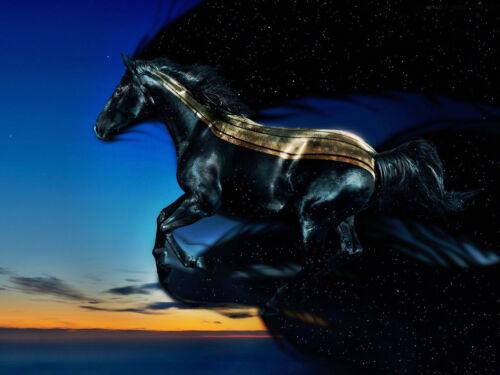 210 x 297mm Fantasy Black Horse Home Decor Canvas Print A4 Size