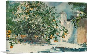 ARTCANVAS Orange Trees and Gate 1885 Canvas Art Print by Winslow Homer