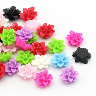 "100Resin Flower HOT Embellishment Finding Flatback Mixed 4/8""x 4/8"" B24957"
