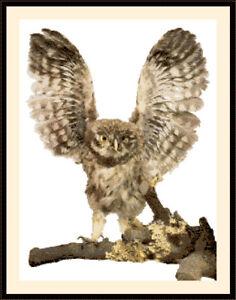 Owl-1002-Cross-Stitch-Kit