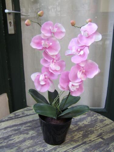 Künstliche Orchidee mit 2 rosa Blüten Höhe ca 50cm im Topf