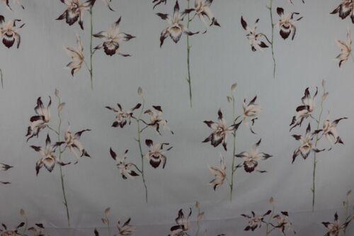 Sanderson pollinies tissu de lin//coton mélangé menthe//Chocolat
