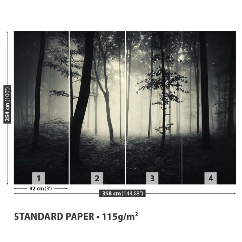 Papier-Fototapete Fototapeten Tapete aus Papier Poster Foto Nebliger Wald