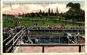 1917-BOSTON-MASS-ELEPHANT-BATHING-FRANKLIN-PARK-POSTCARD-KK1