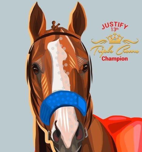 """""""Justiflying"""" Triple Crown Winner Justify jumps in the 143rd Preakness Photo"""