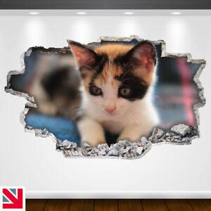 KITTEN-CUTE-CAT-ANIMAL-Wall-Sticker-Decal-Vinyl-Art-A4