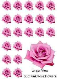30x-Flowers-Pink-Rose-Cupcake-Toppers-Edible-Wafer-Paper-Fairy-Cake-Toppers