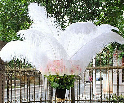 choose 10/50pcs nature white ostrich feathers 6-22in/15cm-55cm Decorative diy