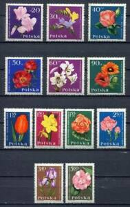 35719) Poland 1964 MNH Garden Flowers 12v. Scott #1279/90